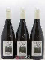 Côtes du Jura Vin de voile Chardonnay du Hasard Labet (Domaine) 2015