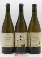Anjou Les Nourrissons Vignes Centenaires Stéphane Bernaudeau (Domaine) 2004