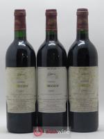 Madiran Vieilles Vignes Château Bouscassé Alain Brumont 1995