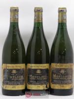 Montlouis Vieilles Vignes Domaine des Liards Berger Frères 1989