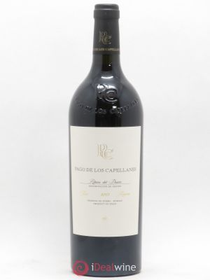 Ribera del Duero Reserva Pago de los Capellanes  2013 - Lot de 1 Bottle