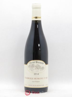 Chambolle-Musigny 1er Cru Les Fuées Olivier Guyot (Domaine de)  2014