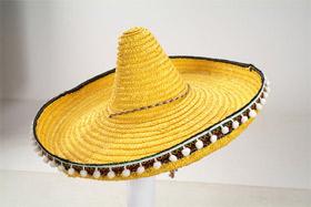 Ceviche à la mexicaine